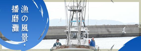 丸新水産 漁の風景・播磨灘