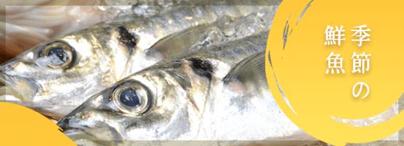 丸新水産 季節の鮮魚